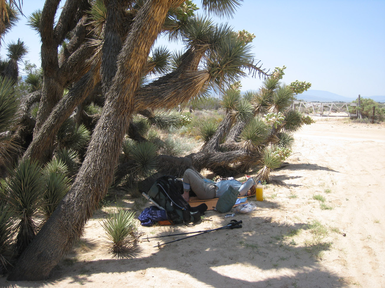 Pacific Crest Trail Desert Break backpack45 author